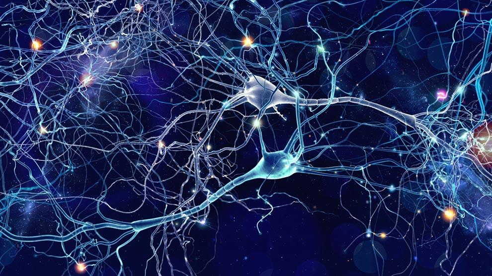 Neural Dating